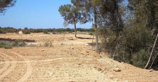 Terraferida ha denunciado vertidos de escombros en Son olivaret.