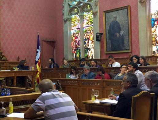 Imagen del pleno del Consell de Mallorca.