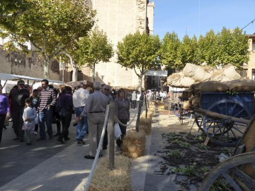 La zona dedicada a la payesía es uno de los atractivos de La Fira de Pollença.