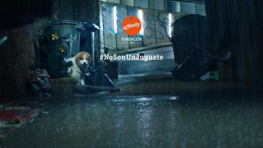 La campaña #NoSonUnJuguete de la Fundación Affinity quiere concienciar a la sociedad de que regalar un animal en Navidad conlleva una gran responsabilidad.