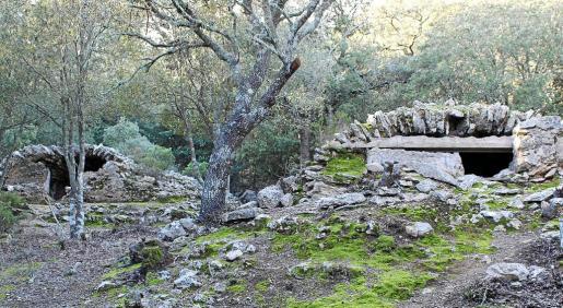Vista de dos de los cinco aljibes cubiertos, ya construidos en 1320. El encinar y la vegetación los van invadiendo y deteriorando.
