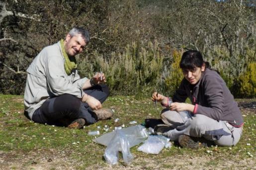 El profesor Miquel A. Arnedo y la doctora Elisa Mora, ambos del Departamento de Biología Evolutiva, han liderado la investigación.