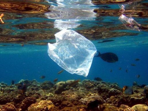 Las bolsas de plástico constituyen un problema medioambiental que el consistorio se propone atajar.