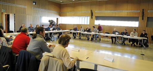 Reunión del Consell Balear de Transportes.
