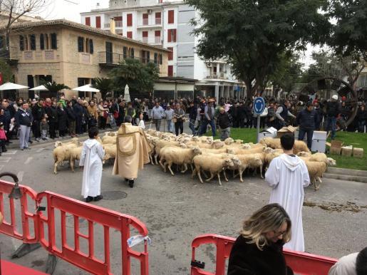 En la capital del Raiguer, el rector de la Unitat de la Mare de Déu de Inca, Antoni Vadell, bendijo a todos los animales que desfilaron por la Gran Vía Colon. Hubo rebaños de ovejas, caballos y varios carros en uno de los cuales se pudo ver al alcalde Virgilio Moreno.