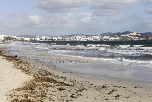 Tan solo las áreas pegadas a la costa podrán librarse de las heladas.