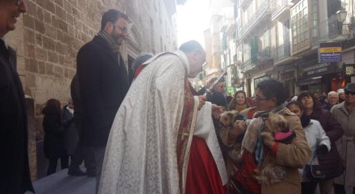 Hila, en el centro de Palma, participando de las tradicionales 'beneïdes' de animales, típicas de Sant Antoni.