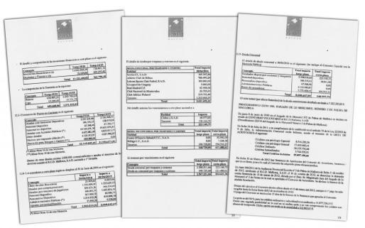 Las 64 páginas de la auditoría reflejan la realidad del Mallorca a 30 de junio de 2016 y que desprende un cierre de ejercicio de ocho millones de euros. El apartado dedicado al convenio del concurso indica los compromisos que debe seguir cumpliendo la SAD balear a corto y medio plazo.
