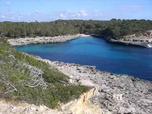 La actuación ha contado con un presupuesto de 31.460 euros y contribuirá a la conservación de los hábitats naturales, enriqueciendo a la vez la biodiversidad del espacio natural.