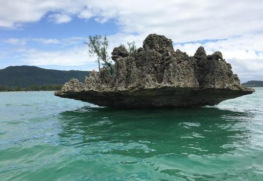 Una imagen de isla Mauricio.