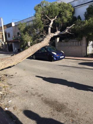 Durante la jornada de este domingo y para este lunes, la Agencia Estatal de Meteorología ha elevado a aviso naranja el viento en Mallorca e Ibiza y el riesgo amarillo en Menorca.