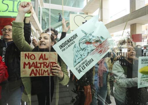 Protestas en Ibiza a raíz de la también polémica matanza de cabras en el islote de Es Vedrà.