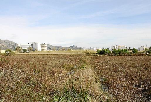 El Govern desclasificó la zona alta de Cala Carbó, que estaba vinculada al desarrollo del Ullal.