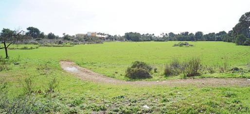 Vista parcial de la parcela, en la actualidad propiedad de Vicenç Grande, que Monjo quiere incorporar al patrimonio municipal.