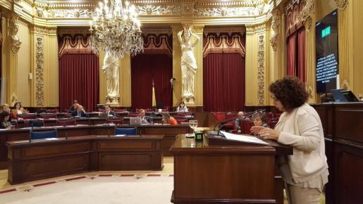 La Diputada de MÉS per Mallorca, Joana Aina Campomar: «Lo que hizo el PP de Baleares el año 95 de subir del 3% al 5% la representatividad parlamentaria fue un golpe de Estado».