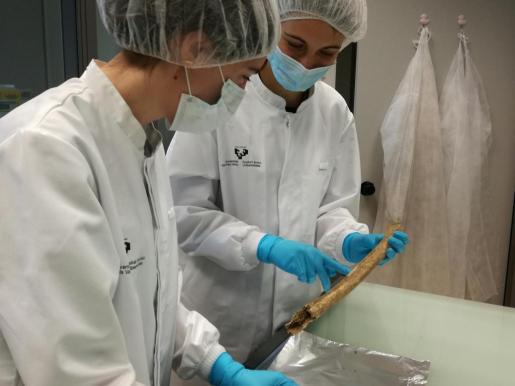 Las doctoras Baeta y Palencia trabajando con restos óseos.