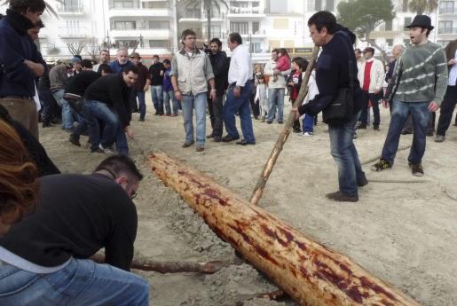 Los jóvenes del municipio trasladan el pino hasta la plaza del pueblo.