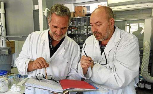Los catedráticos Xavier Busquets y Pablo Vicente Escribá, durante un reportaje concedido a este periódico.