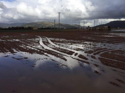 Imagen de los efectos del temporal de lluvia en sa Pobla.
