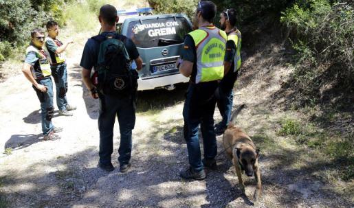 Operativo de búsqueda de la mujer desaparecida en la zona de Betlem-Ferrutx.