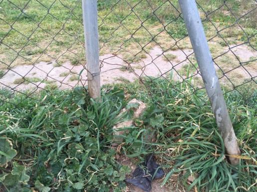La verja levantada puede dañar a los animales que utilizan el parque canino.