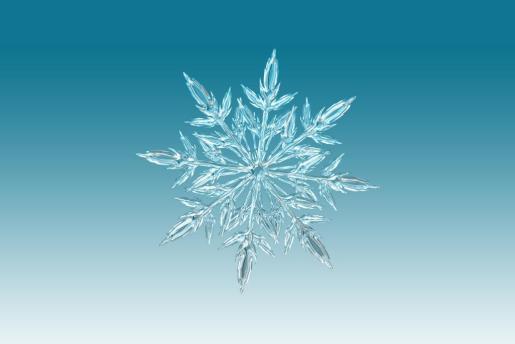 Kepler reflexionó abiertamente sobre los bloques de construcción microscópicos que conducen a la formación hexagonal del cristal de hielo.