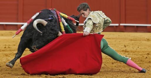 La portavoz del Ejecutivo ha asegurado que éste no ha tutelado la ley. Imagen de una reciente corrida en La Maestranza de Sevilla.