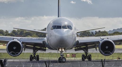 A pesar de que tanto el avión como el equipaje fueron revisados, el vuelo fue cancelado.