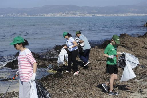 Un grupo de voluntarios ha retirado residuos de Es Carnatge.
