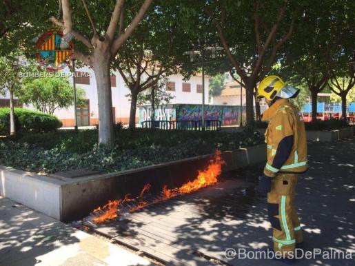 Un bombero trabaja en la extinción de un incendio en el Parc de les Estacions de Palma.