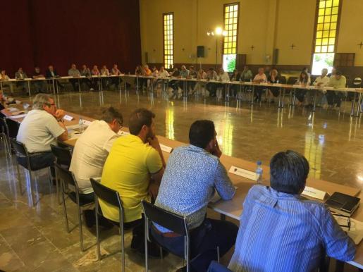 Momento de la reunión en sesión extraordinaria de la Asamblea de alcaldes.