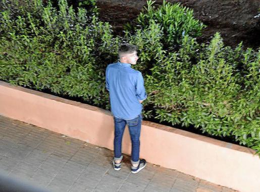 Un turista orinando en las jardineras debajo de un edificio residencial.