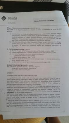 Extracto del examen de Lengua y Literatura Castellanas en la PBAU.