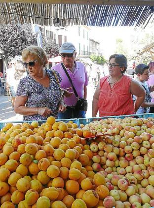 La gran presencia de extranjeros da vida a la Fira de l'Albercoc, dedicada al producto estrella del municipio
