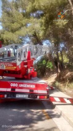 Los bomberos de Palma aseguran la zona después de que una rama haya caído sobre un hombre en la calle Déntol de Can Pastilla.