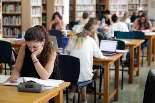 Los cursos persiguen mejorar las capacidades y habilidades de los alumnos de cara a su próxima incorporación a distintos grados.