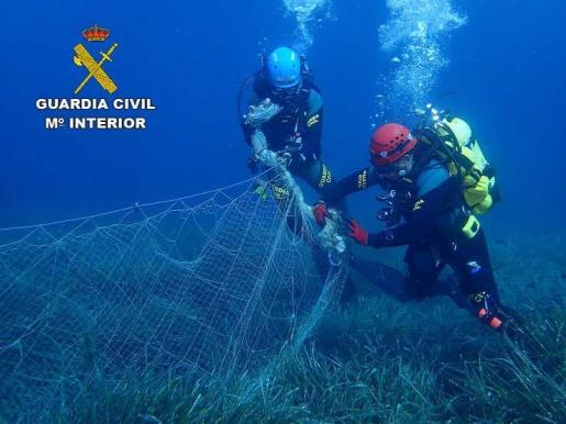 La red se alojaba sobre un campo de posidonia y había atrapado a numerosos peces.