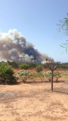 El fuego se declaró muy cerca del lugar donde hace mes y medio se registró el primer gran incendio del año en Formentera.