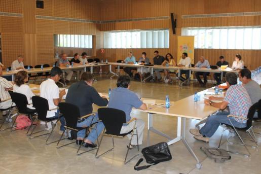 Imagen de la reunión del Consell Agrari Interinsular.