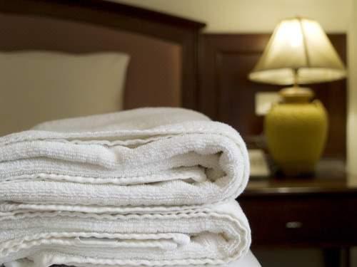 Es frecuente que los hoteles sufran la desaparición de toallas, bombillas, cubertería, secadores, pilas del mando a distancia, albornoces, secadores, copas, sábanas u obras de arte de las paredes.