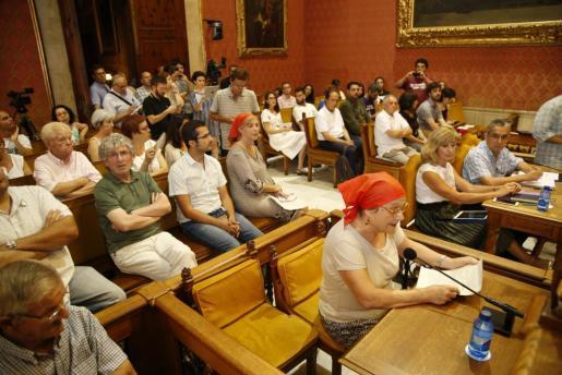 Memòria de Mallorca interviene al inicio del pleno.