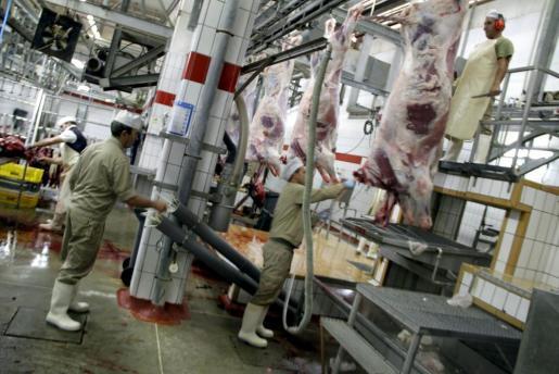 Imagen archivo del matadero municipal.