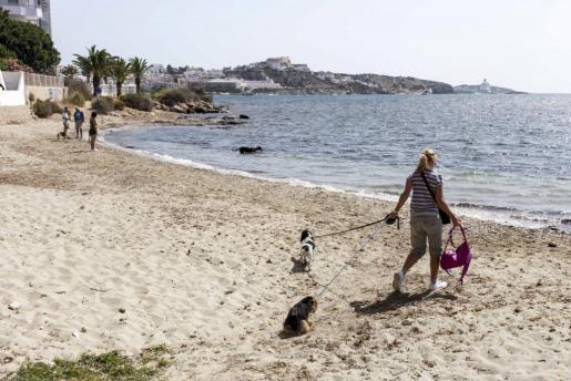 Ibiza abrió a los perros 360 metros de playa en es Viver durante todo el año.