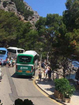Las nuevas rutas públicas de interés turístico y senderista comenzarán a operar el 1 de enero de 2019 con la idea de descongestionar de vehículos particulares los lugares más masificados de la Serra de Tramuntana, entre ellos la Calobra.