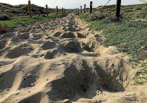 Los caballistas dicen que las pisadas de los caballos no afectan al sistema dunar.