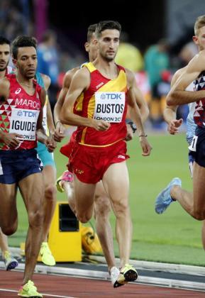 El mallorquín David Bustos, durante la prueba de 1500 metros esta noche en el estadio olímpico de Londres, en los Campeonatos del Mundo de Atletismo. EFE/Lavandeira jr.