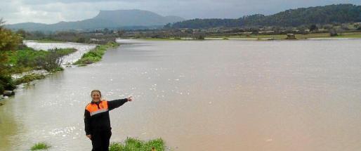 Imagen de unos campos de cultivo en la zona del torrente de Pina, en el municipio de Algaida, tras el temporal de diciembre.