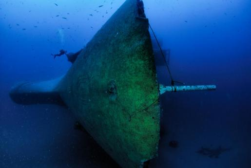 Dos submarinistas bucean entre los restos del 'Don Pedro', completamente cubierto por la vegetación.