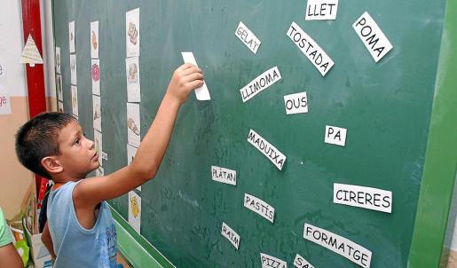 El servicio contempla cuatro programas, uno de ellos se desarrollará en el ámbito educativo.