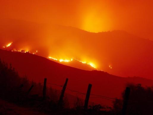Llamas del incendio forestal que afecta a la zona de la Reserva Naturasl de los Ancares.
